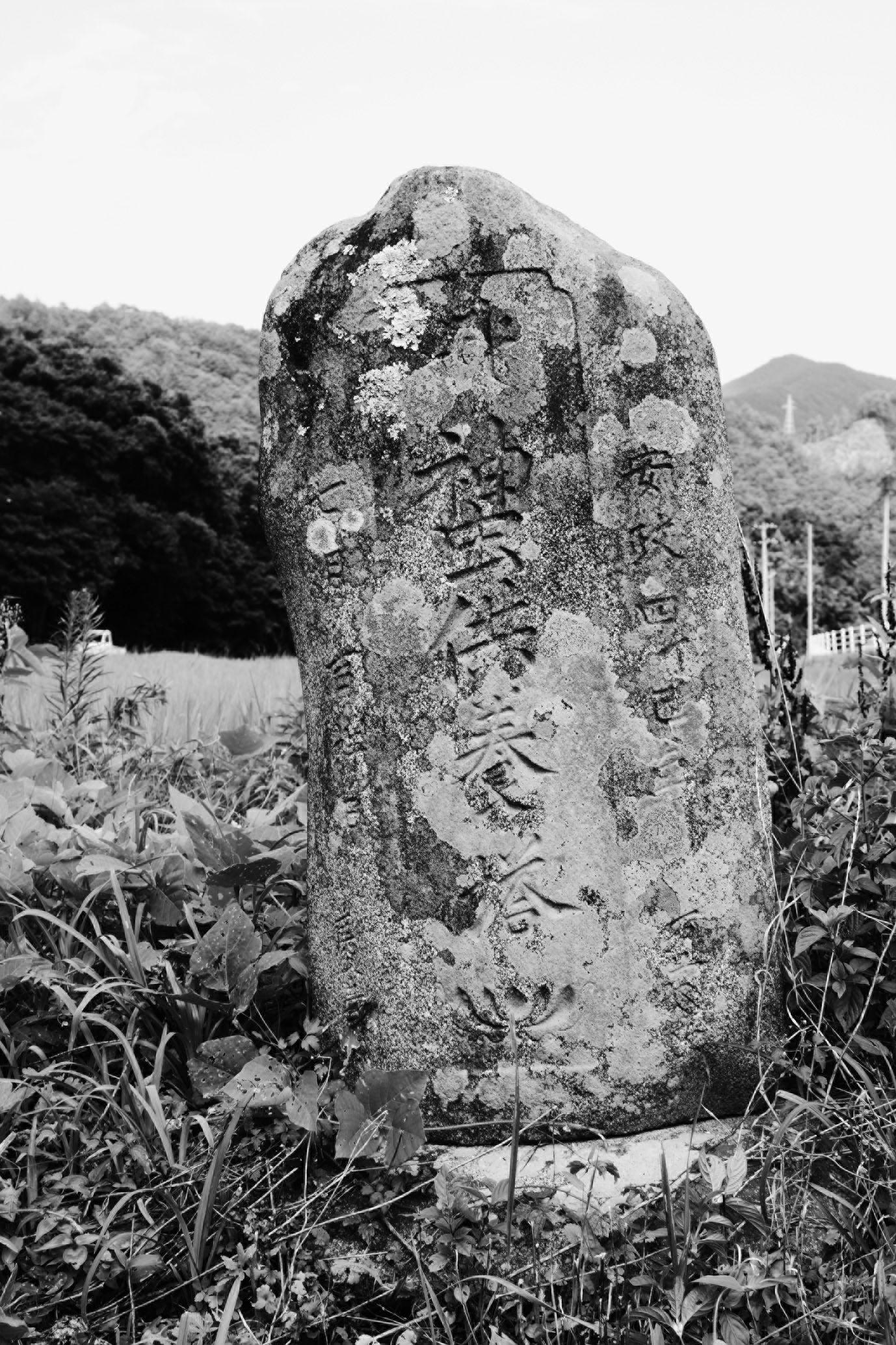 ファイル:石碑 201009 腹帯神虫...